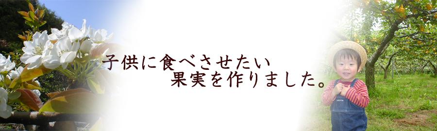 oxtN7i.jpg